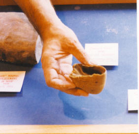 Above is a horse's hoof that is shrunken since drying out.  Horses are not found in the Sinai Peninsula today