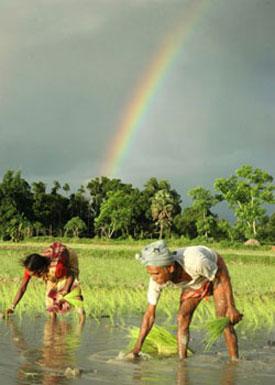 Photo Telanjang Gadis Desa Com
