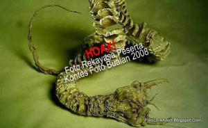 Mahluk Misterius Pembawa Maut Di Gurun Gobi [ www.BlogApaAja.com ]